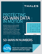 Protecting SD-WAN Data in Motion