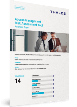 Access Management Risk Assessment Tool