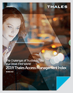 2019 Access Management Index - Report