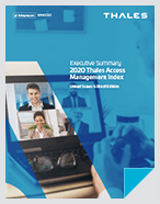 2020 Access Management Index - United States & Brazil Edition - Executive Summary