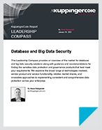 Database and Big Data Security - Report