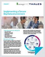 Implementing A Secure Big Data Environment With MongoDB And Vormetric - Solution Brief