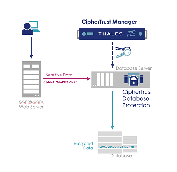 Diagramma CipherTrust Data Protection